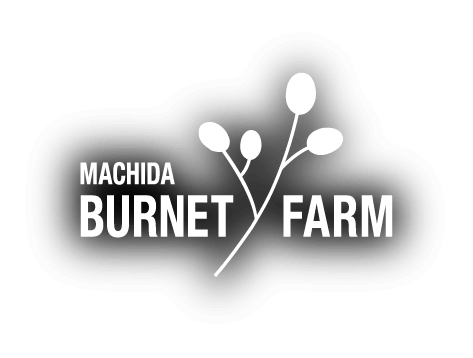 MACHIDA BURNET FARM